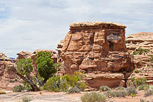 Rock, Canyonlands