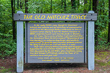 The Natchez Trace