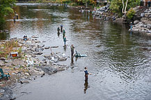 Fishing in the Salmon River