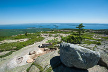 Cadillac Mountain View