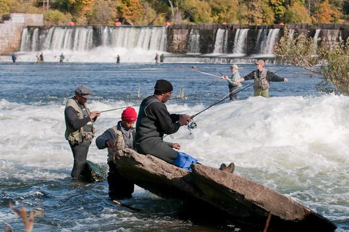 Salmon fishing on the oswego river 2009 for Oswego river fishing