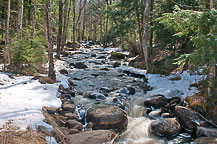 Stream in Adirondacks