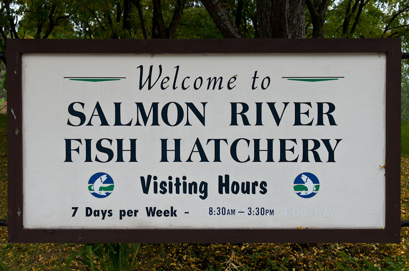 Salmon River Fish Hatchery Open House, 2010